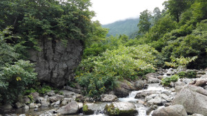 シッケイ沢出合の大岩