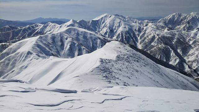 白毛門~柄沢山の山稜