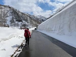 銀山平はまだ雪の壁でした