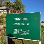 Tumling