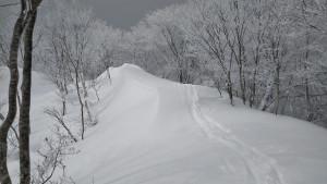 鹿俣山先の尾根
